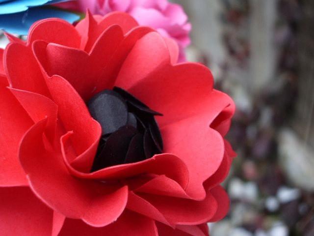 Segnaposto fiore di carta papavero rosso