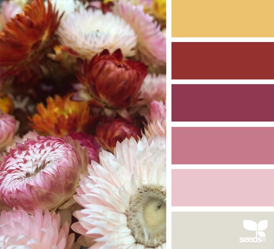 Matrimonio Oro E Azzurro : Bouquet rosa antico i modelli più belli e le palette