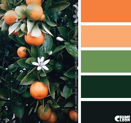 palette colori matrimonio tema sicilia arancione